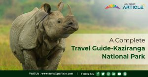 A Complete Travel Guide-Kaziranga National Park